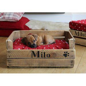 Lettino per cani Milo vintage