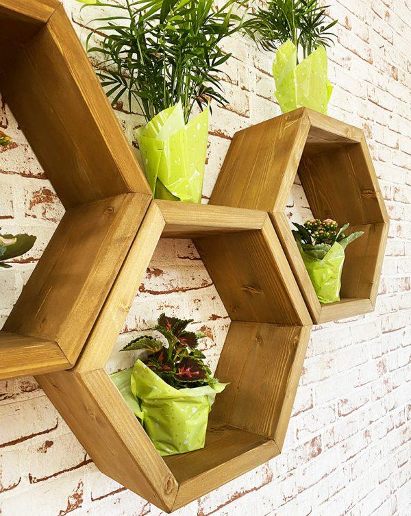 scaffale pensile esagonale da parete in legno con piante