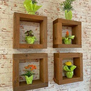 Cubi in legno da parete con piante da interno