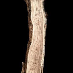 Asse in legno grezzo di castagno segato da tronco H232 L58-45 P8 Valentina