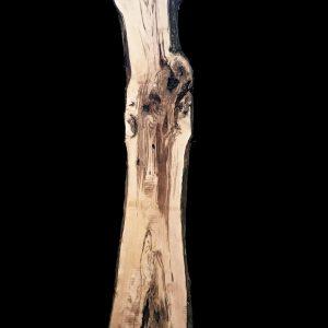 Asse in legno grezzo di castagno segato da tronco H326 L60-45 P8 Giorgia
